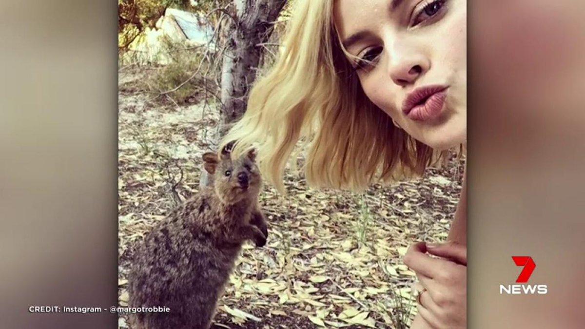 Image for the Tweet beginning: Oscar nominee Margot Robbie has