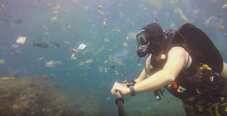 This diver captured shocking footage of animals swimming in a sea of trash 💔 https://t.co/JUWzb8Rqs7