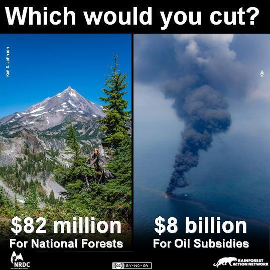 I would cut the Oil Subsidies. And you?...