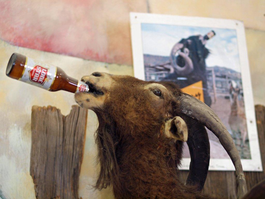 смешные картинки пиво козел яркий