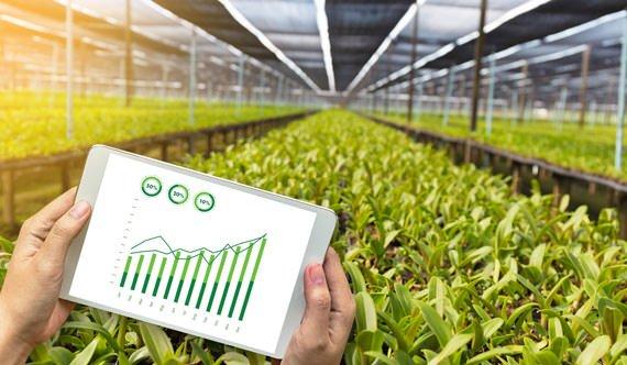 Agricoltura 4.0:solo l'1% della superficie agricola italiana è digital, ma l'#agrifood è in fermento. Al mondo su 481 startup specializzate in questo settore il 12% sono italiane e molte aziende affermate si stanno aprendo alla #tecnologia #ItalianFactory  https://t.co/TLfnrLUQY7