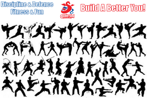 How many times have you been asked, what style of #martialarts do you do? It is not important what you do, but rather why you do it. Read our blog on this - bit.ly/MAStyle #buildabetteryou #selfdefence
