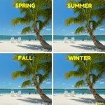 RT @VISITFLORIDA: Another season of sunshine! #Fir...