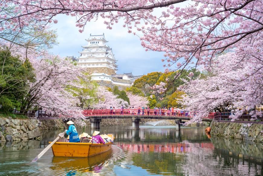 0df95aaa073c 20 sakura cherry blossom spots to visit across japan in 2018
