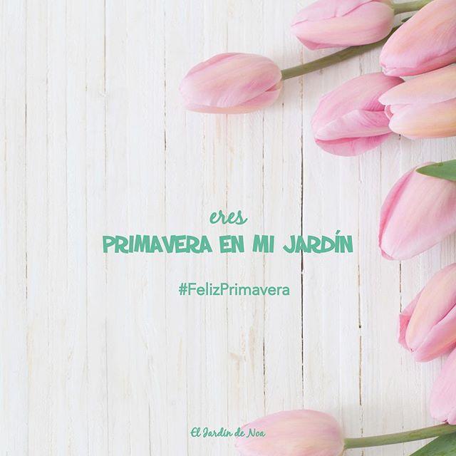 El Jardin De Noa On Twitter Es Primavera Asi Que Nos Entregamos