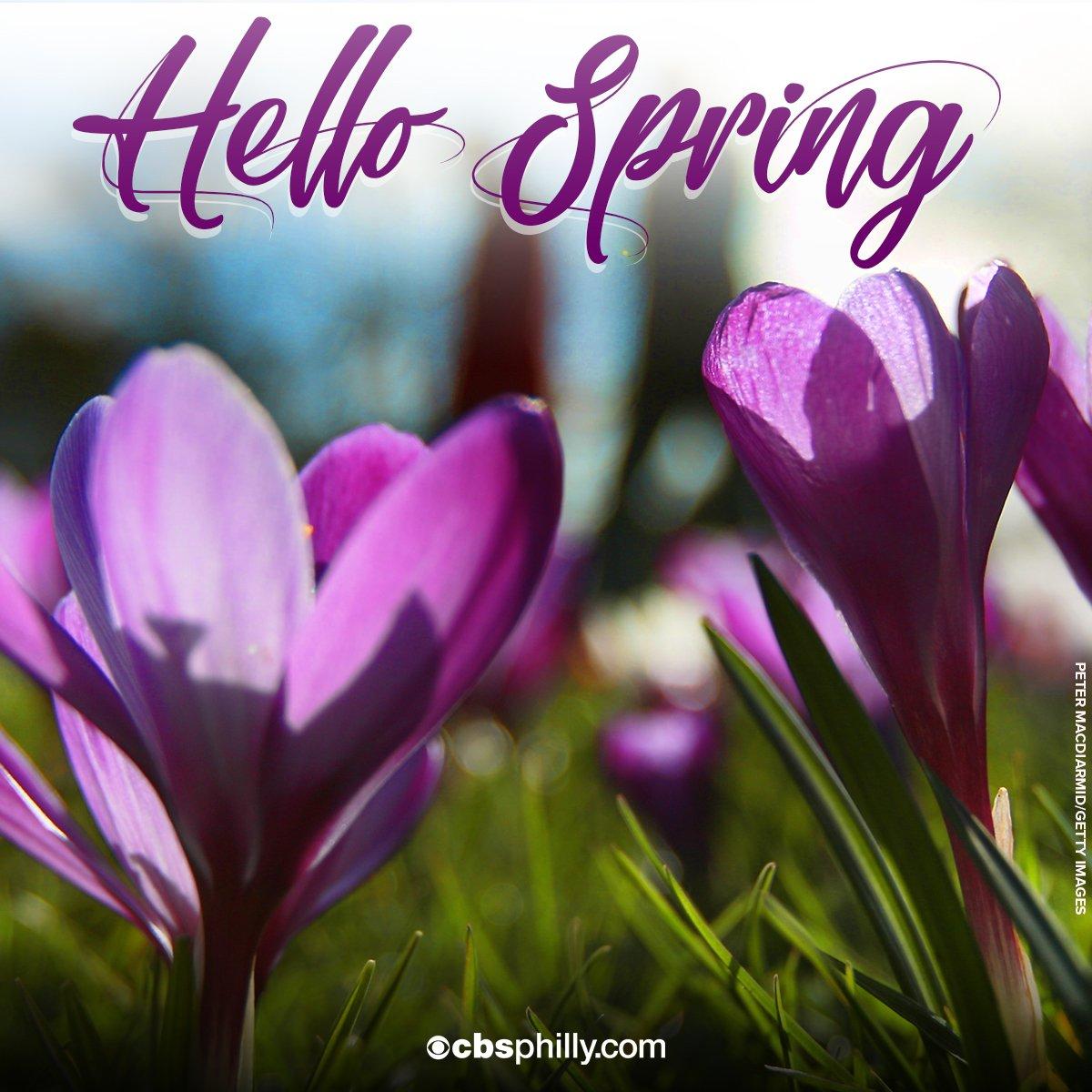 cbs philly on goodbye winter hello spring sort of