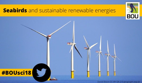 CALL FOR PAPERS | #Seabirds: towards a sustainable future with renewable energies | #BOUsci18 | 11 Oct 18 | ow.ly/BmzZ30iKXvo #ornithology #conservation #climatechange #renewables #RenewableEnergy #CleanEnergy