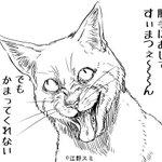 これは腹立つ!叱られているけど反省していない猫!