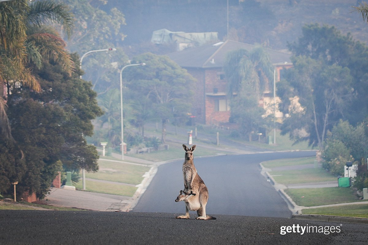 A hazy morning in Australia's seaside town of Tathra in the aftermath of a wild bushfire that devastated the area.
