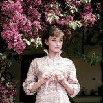 RT @rareaudrey: Audrey Hepburn photographed by Mil...