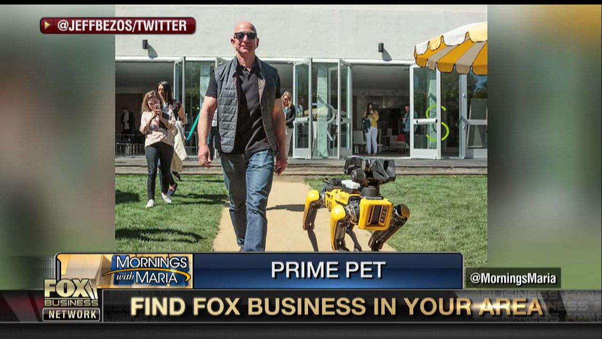 Jeff Bezos Walks Robot Dog Baaz