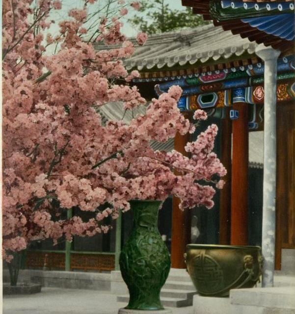Asian Art Museum's photo on Arts