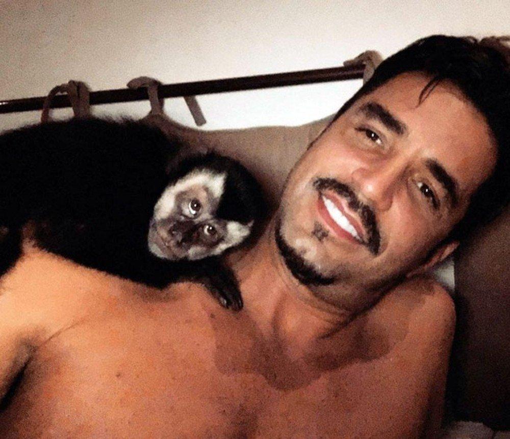 Twelves, macaco do Latino, morre após ser atropelado https://t.co/fJHHVfH4Yo #G1