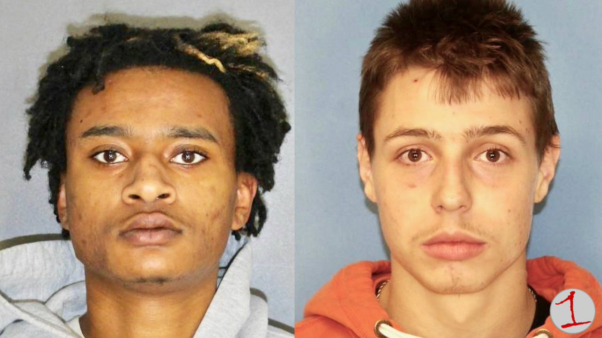 Newark teens charged with murder of Sodus HS student
