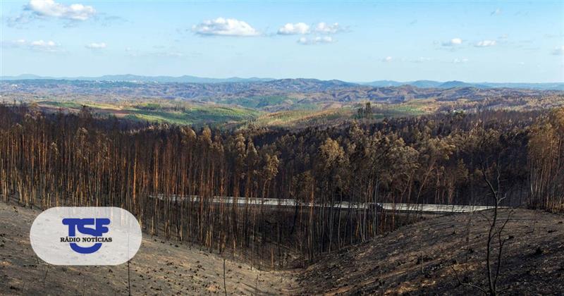 #Sociedade Fogos de outubro em Portugal foram os maiores da Europa no outono https://t.co/MQElPiw8Uc Em https://t.co/MDmhqgtnSp