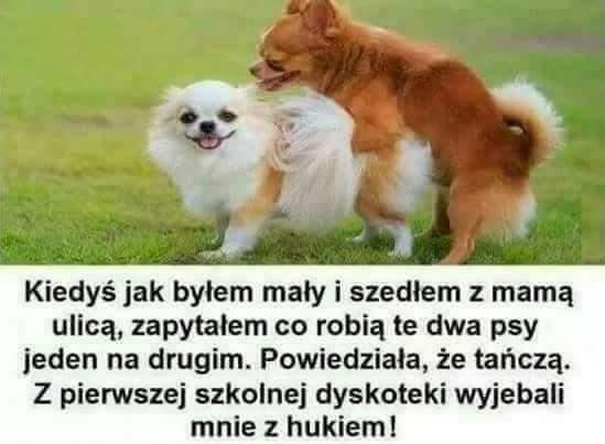 ElektrowniaKlub's photo on #Polen