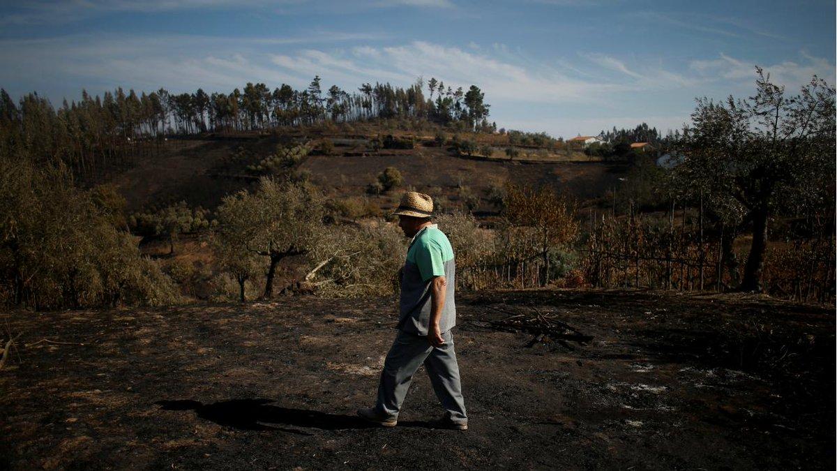 O problema do 'efeito Pedrógão' nos fogos de outubro https://t.co/8wJCmwgbq7