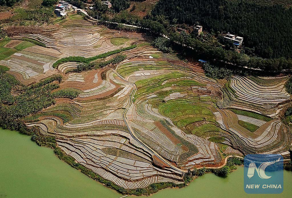 A year's plan starts with spring! Large scale of ploughing fields are seen in Napo County, south China's #Guangxi Zhuang Autonomous Region