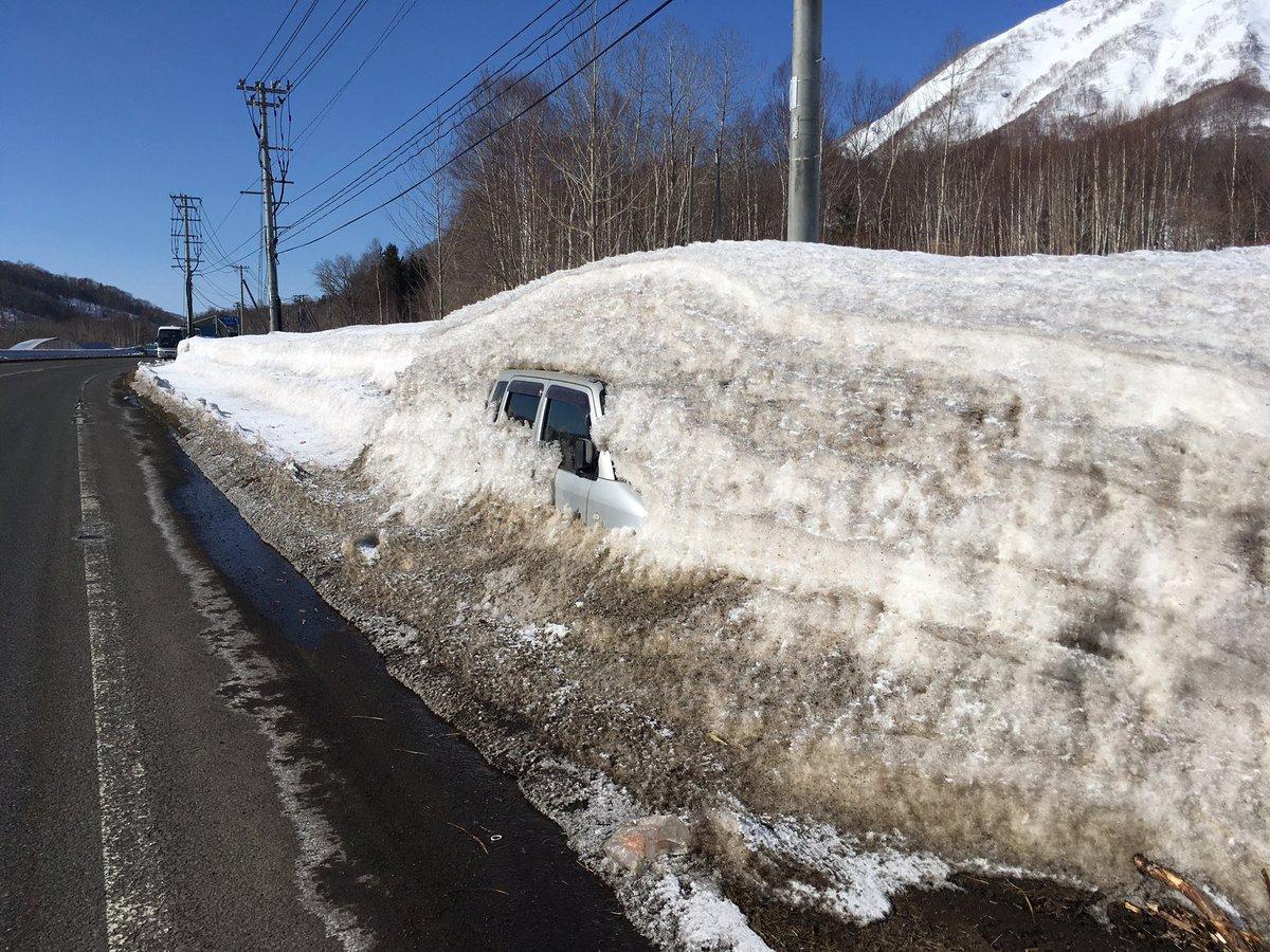 北海道もだんだんと雪が溶けてきました 春を感じますね
