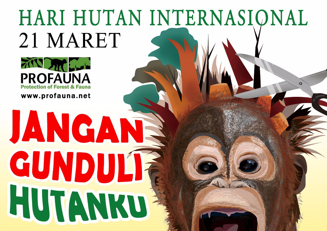 Selamat Hari Hutan Internasional! Semoga hutan Indonesia lebih gondrong lagi https://t.co/pHtrLJ3LsQ