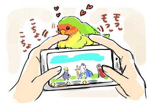 スマホでゲームしてると妨害してくるインコ 「二次元よりオレを愛でろ」 https...