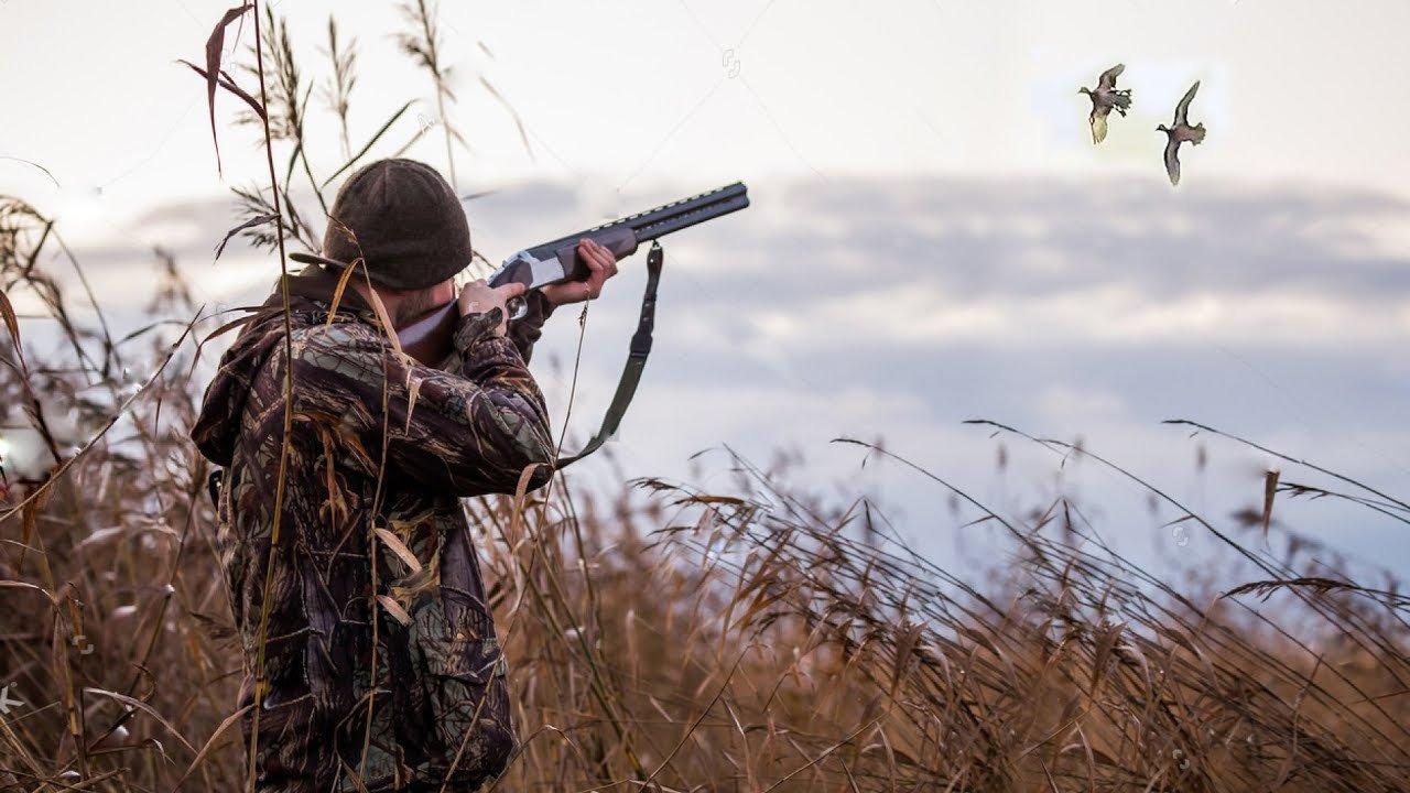 Картинки про охотников красивые