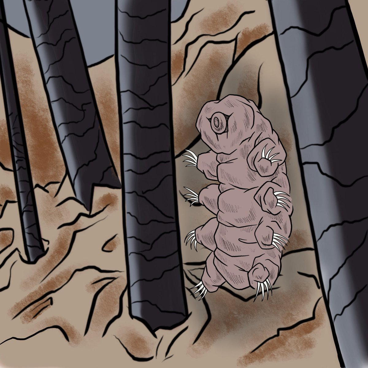 painting of a tardigrade standing with limbs outstretched