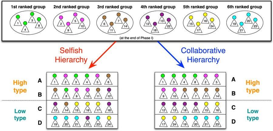 epub diversity in