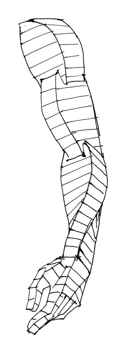 腕の流れの単純化 これを考えるようになってから、空間の中で人体を描くのがだいぶ楽になった。