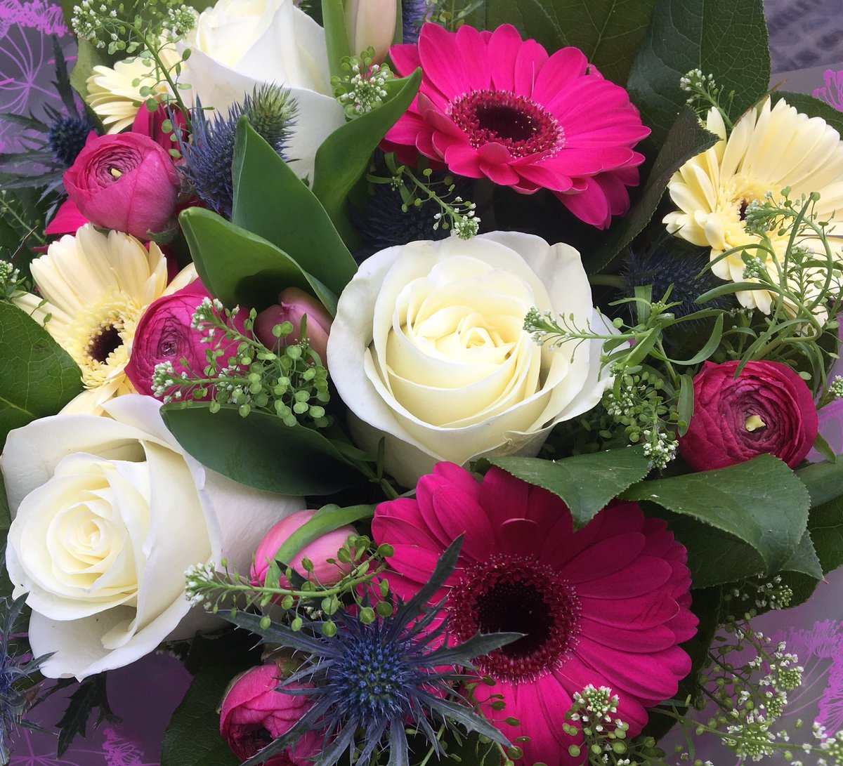 Pick A Posy On Twitter Good Morning Everyone Happy Wednesday
