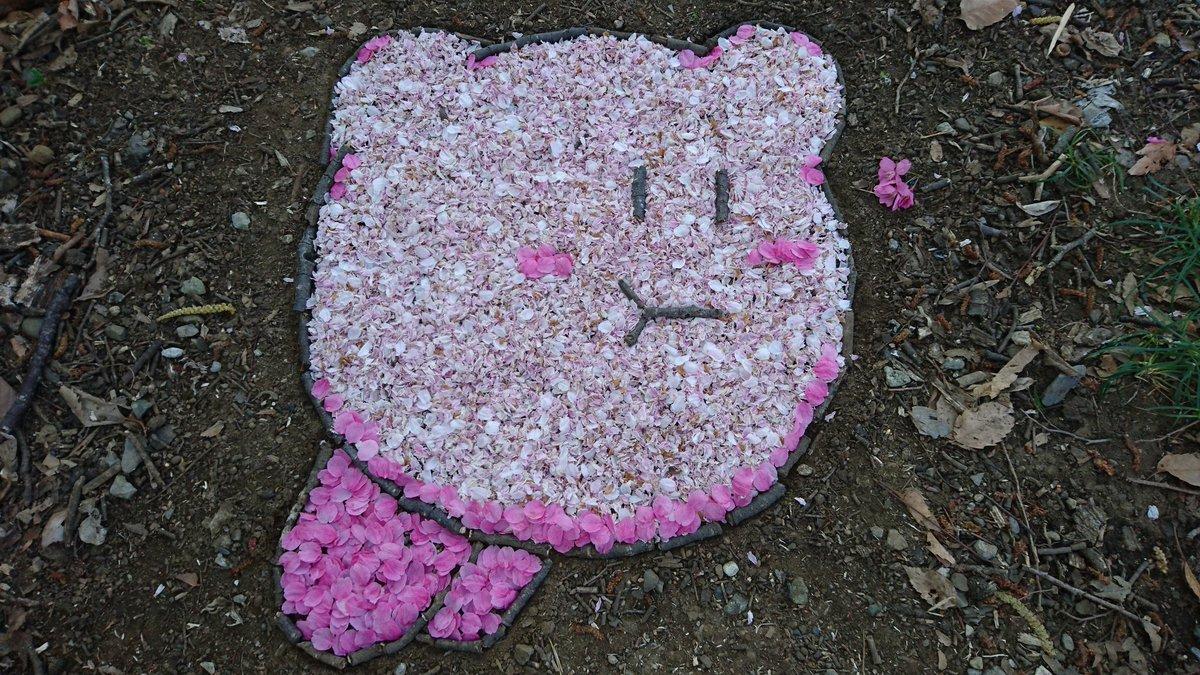 かわいいいいい!  地面に現れた「桜カービィ」 桜の花びらと枝を使って制作 - ねとらぼ