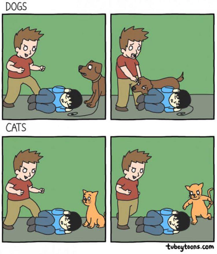 Tvtropes On Twitter Heroic Canines Villainous Felines Https T Co Pfalygmzq Credit Tubey Toons