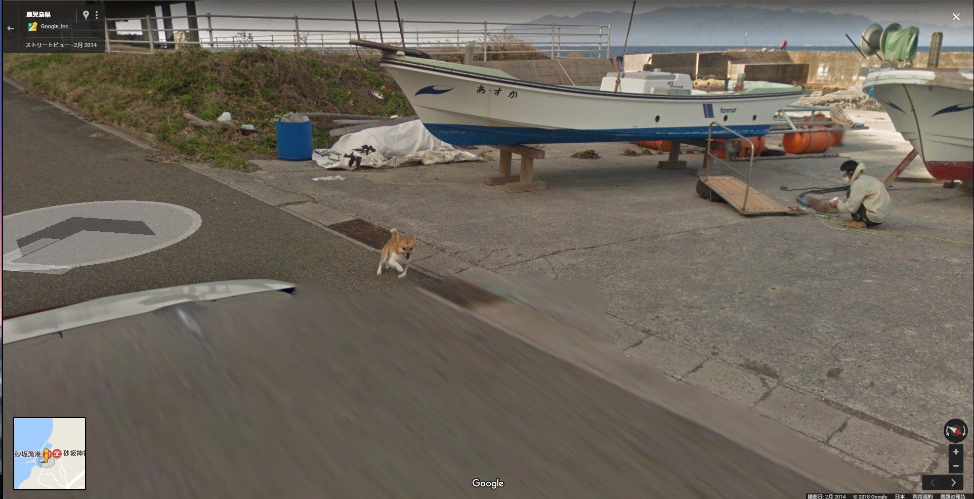 確かに怪しいからねw種子島でgoogleカーをずっと追いかける犬が写っている