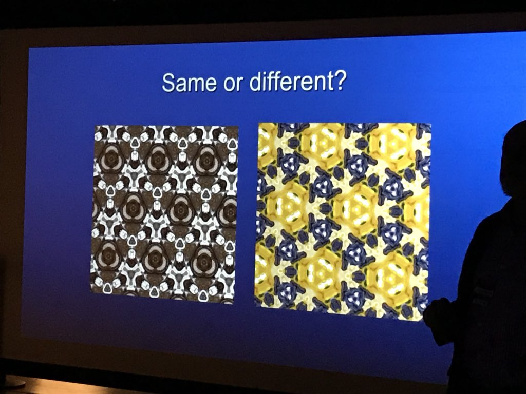 National Museum Of Mathematics On Twitter Do These Wallpaper Patterns Have The Same Type MathEncounters