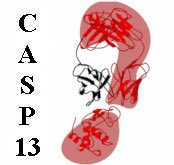 Are you currently working on solving a novel protein structure or complex? Curious to learn how the best structure prediction techniques would perform on your protein? The CASP experiment is looking for challenging prediction targets http://predictioncenter.org/casp13/index.cgi#call…