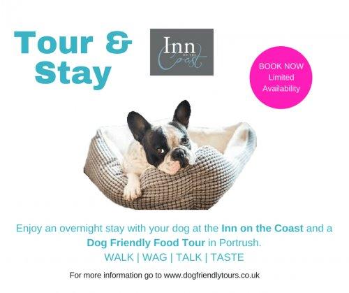 Doggy Weekend away... dogfriendlytours.co.uk/doggy-weekend-…