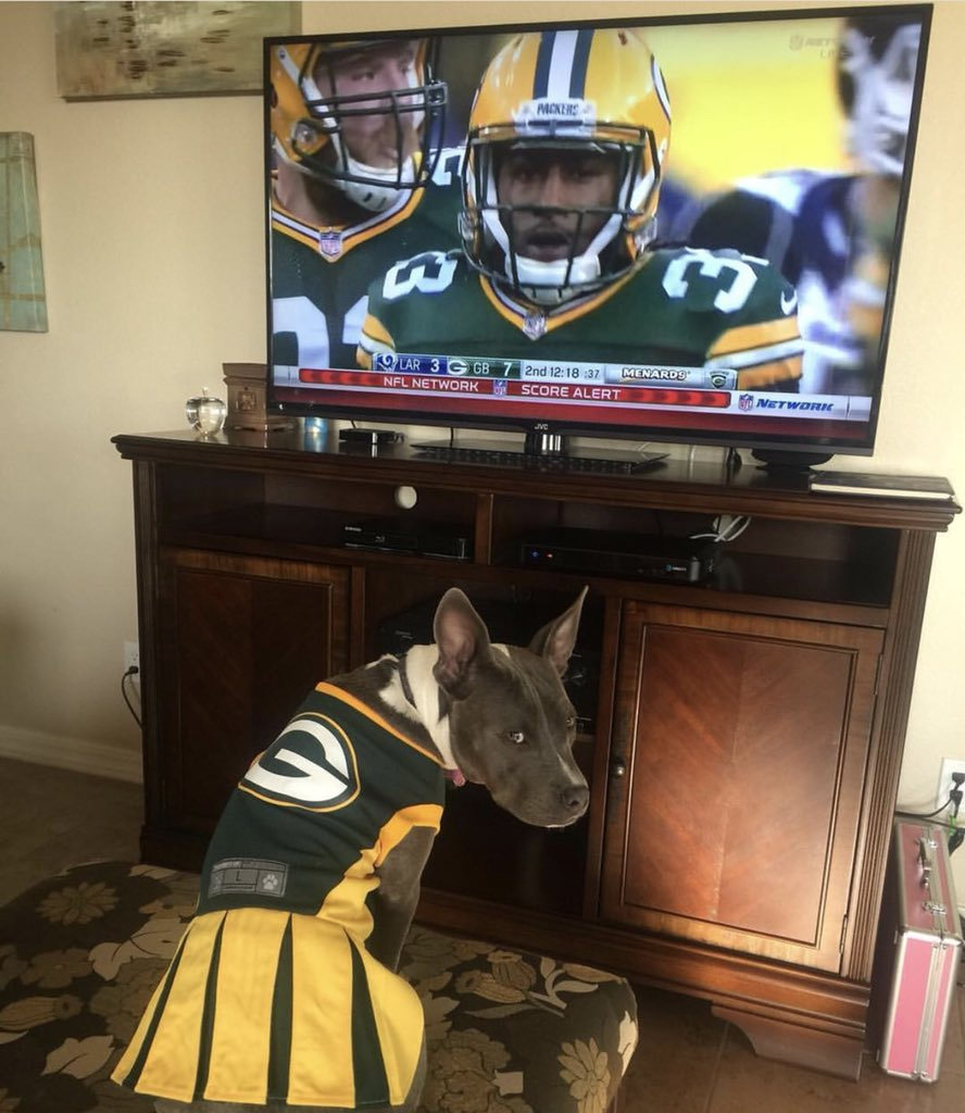 @packers Our #PackersPup Lily cheering on @Showtyme_33. #NationalPuppyDay