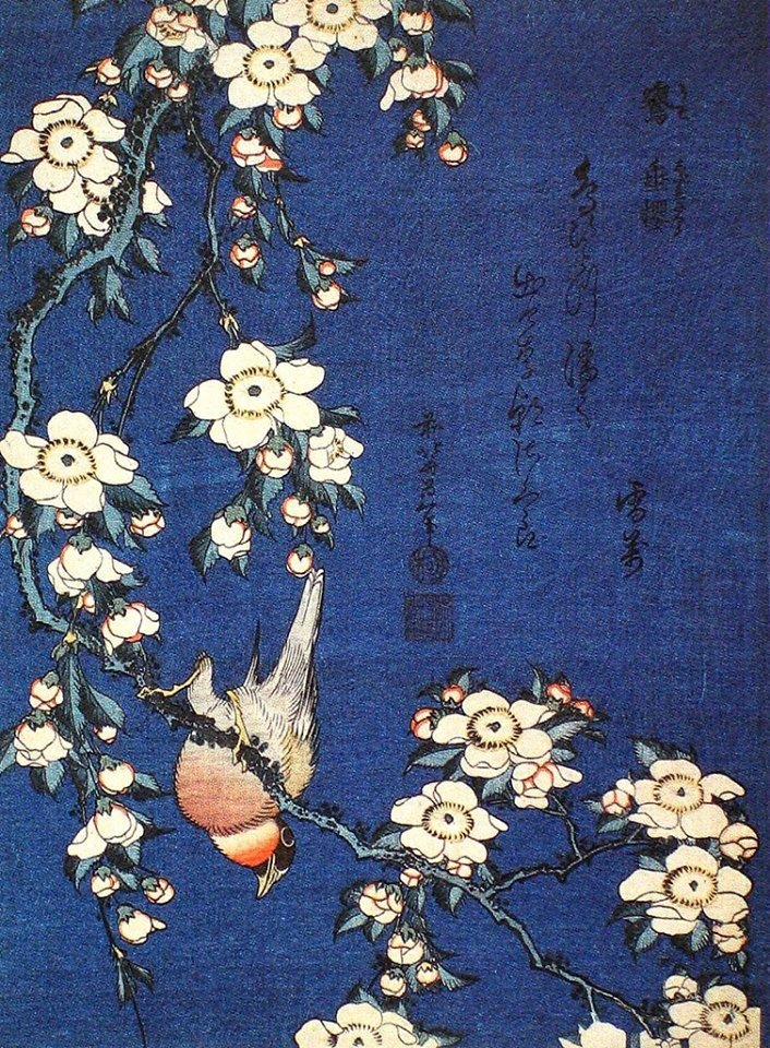 Katsushika Hokusai, Bullfinch and Weepin...
