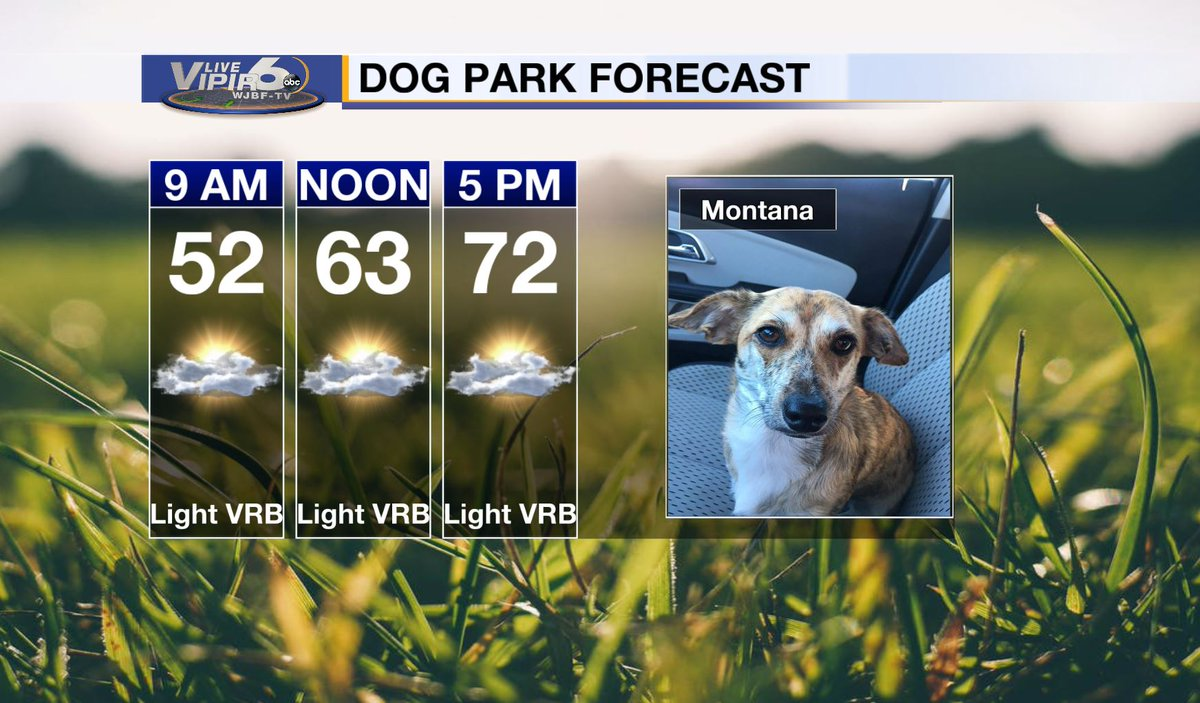 Montana says today's forecast couldn't be more perfect to head to the dog park! Enjoy the spring-like temperatures!