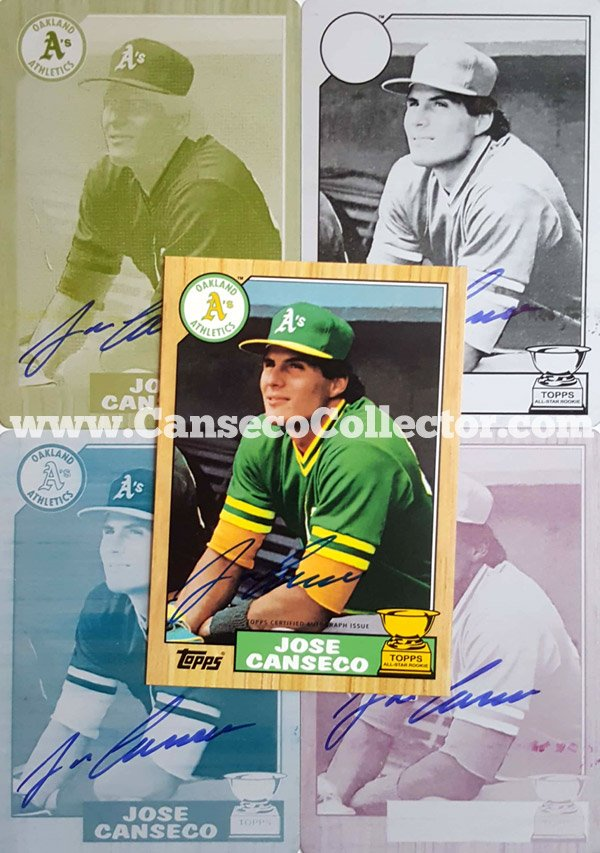 The Tannermouschi Jose Canseco Baseball Card Collection Is All
