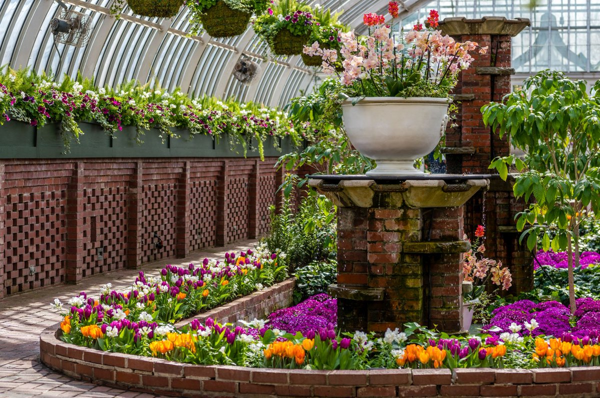 Phipps conservatory and botanical gardens on twitter from bathtubs extravagant spring flower show scents of wonder treat your senses and celebrate the season were open daily httpphippsnservatory spring mightylinksfo