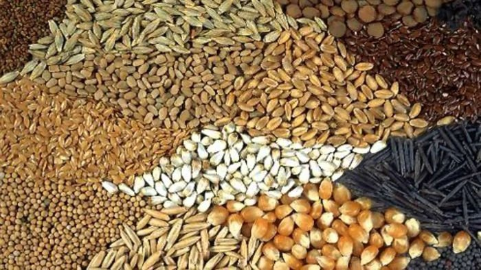 Granos | Las cotizaciones del mercado de granos del 28 / 03 / 2018