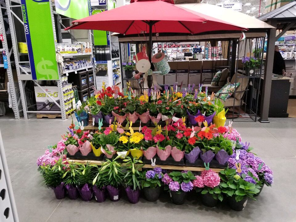 Monica welter on twitter visit spring lowes in stonybrook 735 pm 24 mar 2018 mightylinksfo