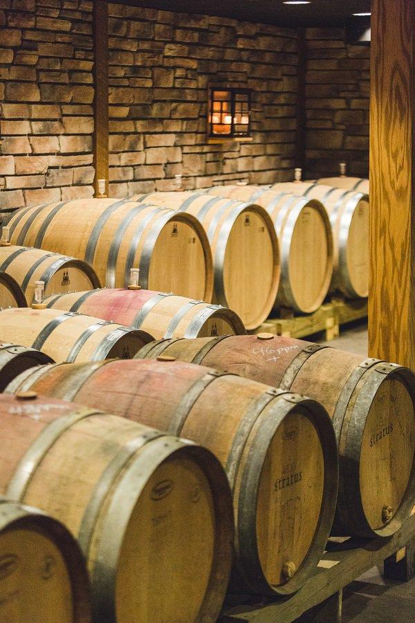 Wein Investment: Mit edlen Tropfen hohe Gewinne