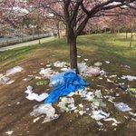 綺麗な桜の木が泣いている!絶対に許さないお花見後の悲しい光景!
