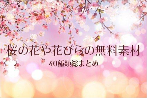 コリス On Twitter 全部商用利用無料桜のイラスト桜の花びらの