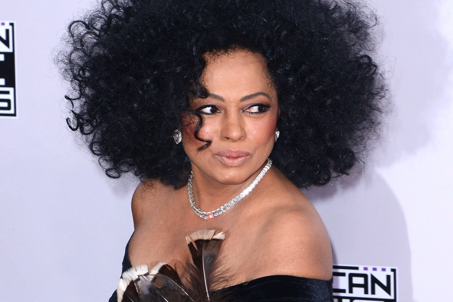 Happy Birthday Diana Ross 1944   26               74