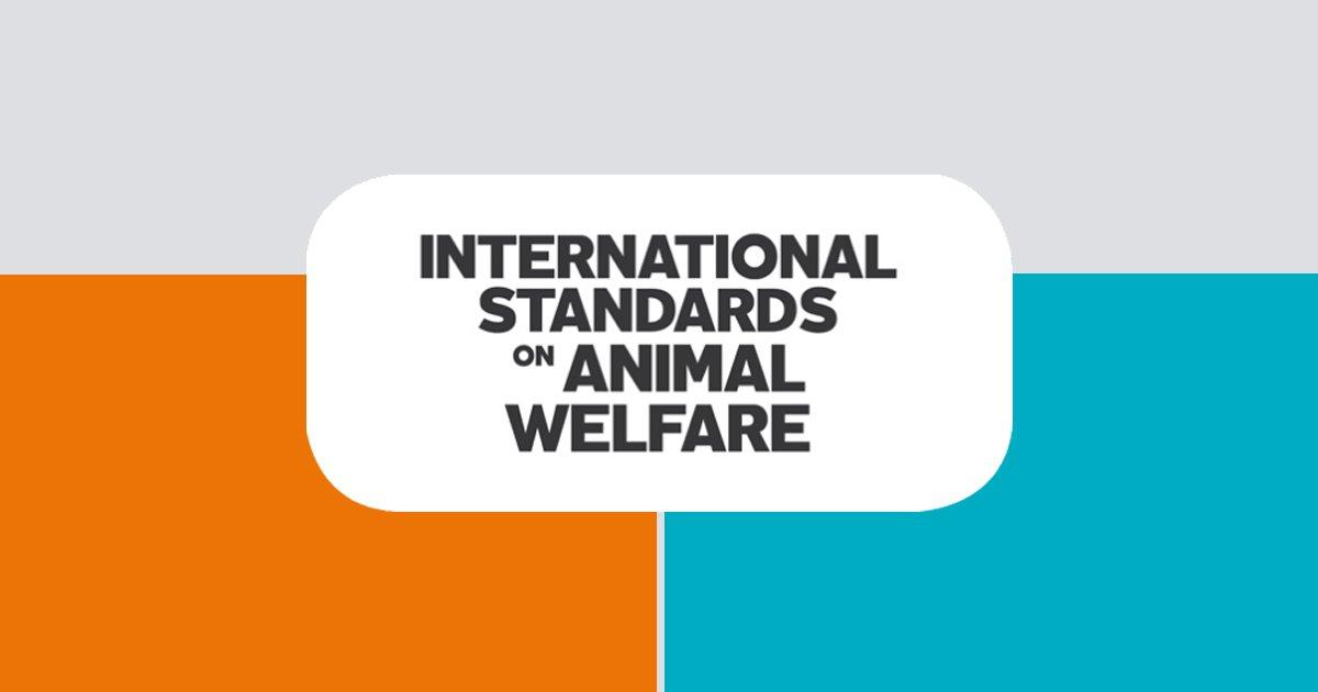 Oie Animal Health On Twitter Oieanimalwelfare Standards Are