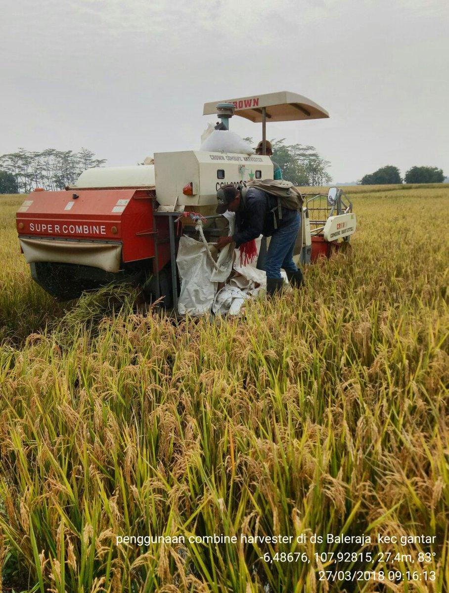 Karantina Pertanian On Twitter Ini Contoh Yang Sangat Baik Panen