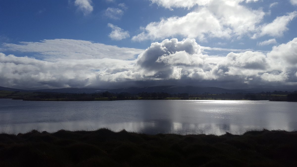 @lovepetireland @LovingpetsUK I hear ya. View from the mobile office this morning.